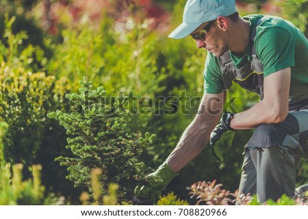 Gardener Planting New Trees in the Clients Garden. Gardening and Landscaping Theme. #708820966