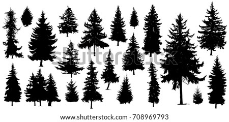 Set of Twenty One different silhouettes of pine trees. Handmade.