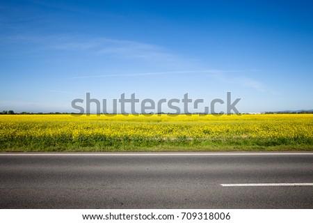 Asphalt road among the summer field. Beautiful countryside landscape #709318006