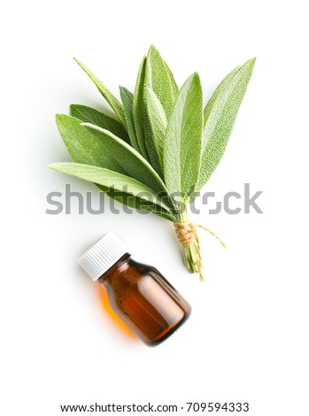 Bottle of essential sage oil and sage leaves. Sage isolated on white background. #709594333
