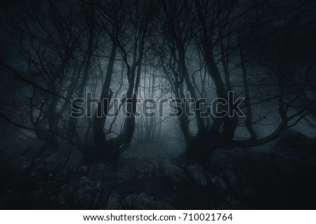 nightmare forest with creepy trees Royalty-Free Stock Photo #710021764