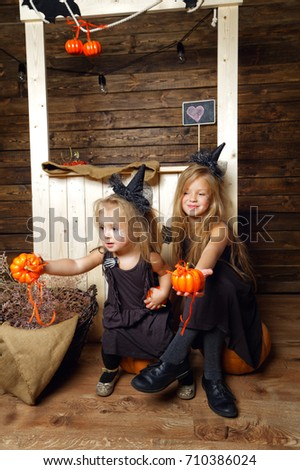two little girls are sisters in costumes witch sitting on a pumpkin on the background of the wooden wall decorations for Halloween #710386024