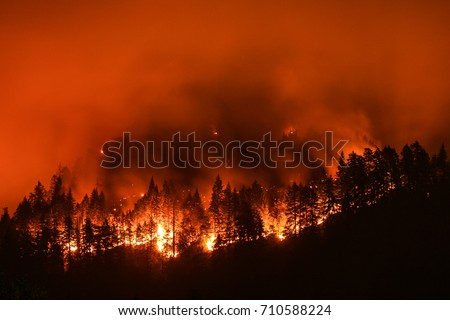 Eagle Creek Wildfire in Columbia River Gorge, Or #710588224