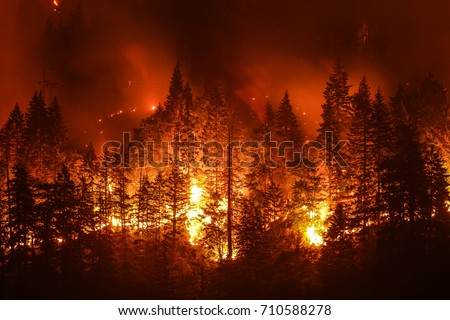 Eagle Creek Wildfire in Columbia River Gorge, Or #710588278