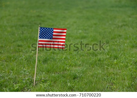 USA Flag. Photo of American flag on a green grass lawn background. National United States of America flag waving outdoor