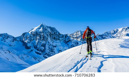 Mountaineer backcountry ski walking up along a snowy ridge with skis in the backpack. In background blue sky and shiny sun and Zebru, Ortler in South Tirol, Italy.  Adventure winter extreme sport.  #710706283