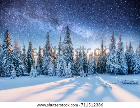 Dairy star trek iover the pine forest. Mysterious landscape majestic mountains in winter.