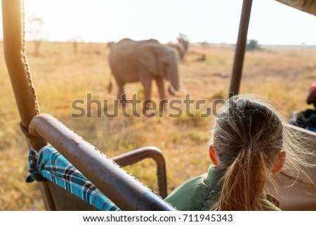 Adorable little girl in Kenya safari on morning game drive in open vehicle #711945343