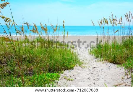 Sandy sand path through tropical sea oats down to a beautiful calm blue ocean beach on a sunny afternoon. #712089088