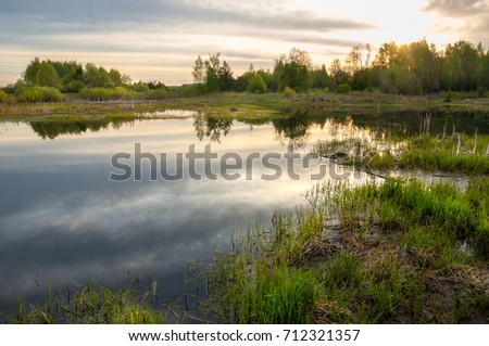 Spring catering. A beautiful spring landscape with a swamp, Sunrise. Green forest and cloudy sky with clouds. Natural environmental concept in the open air. #712321357