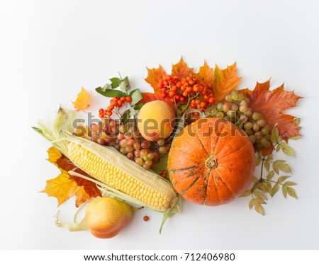 Background image of autumn harvest products on a white background. Place for text. #712406980