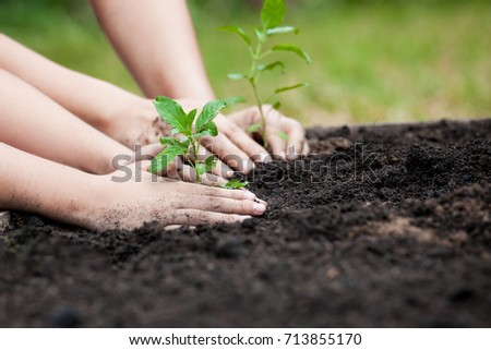 Child and parent hand planting young tree on black soil together as save world concept #713855170