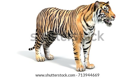 Tiger (3d) #713944669