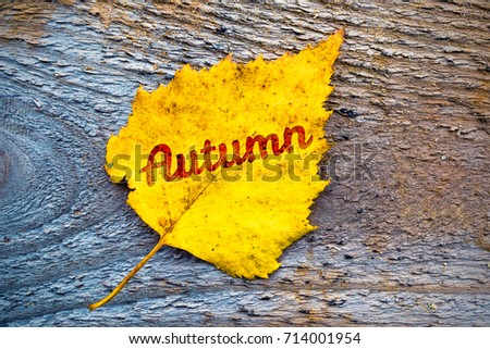Autumn yellow leaf on wooden background with inscription #714001954