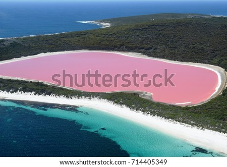 Lake Hillier, Western Australia: Amazing pink lake, natural landmark of Australia, in Middle Island, Recherche Archipelago Nature Reserve, near Esperance. #714405349