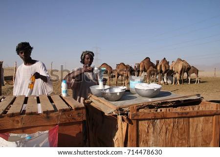 MECCA, SAUDI ARABIA : SEPTEMBER 2017 - People selling camels milk at desert. #714478630