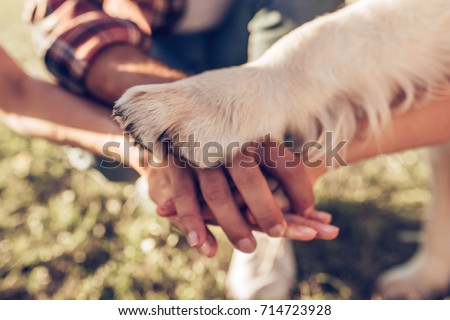 Hands and paws of all family members. Father, mother, daughter and dog are taking hands together Royalty-Free Stock Photo #714723928