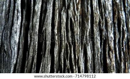 Stripes of natural wood #714798112