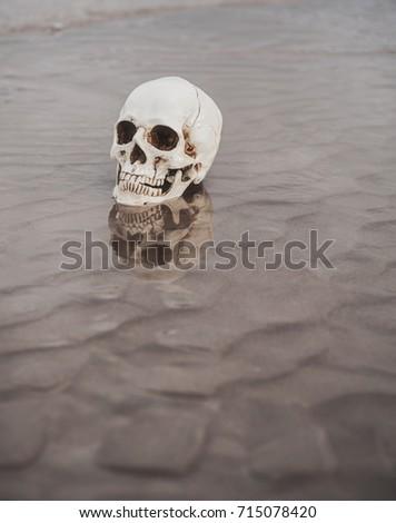 Human skull on the wet sand. Halloween background #715078420