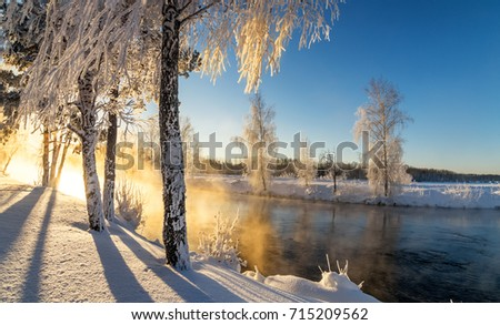 frosty winter morning landscape with mist and forest river, Russia, Ural, January #715209562