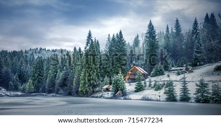 Winter forest in the Carpathians on Lake Vito #715477234