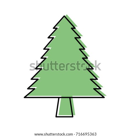 pine tree forest natural flora foliage #716695363