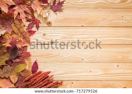 fallen leaves on wooden background, top view #717279526