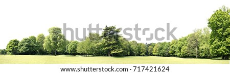 View of a High definition Treeline isolated on a white background #717421624