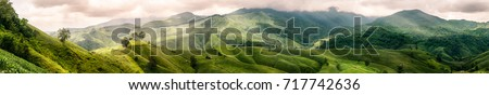 Panoramic of corn farm mountain with little cottage in countryside. Nan, Thailand Royalty-Free Stock Photo #717742636