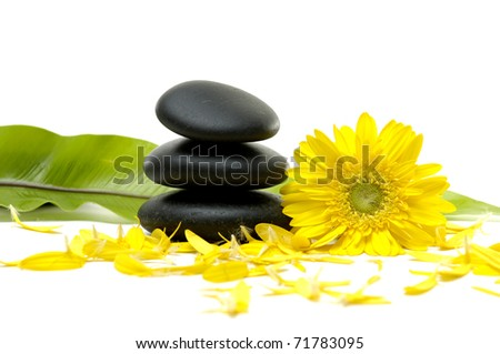 zen pebbles and green banana leaf with flower petals #71783095