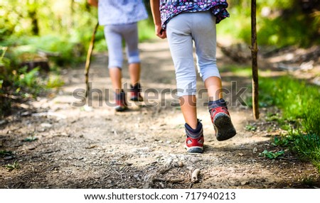 Children hiking in mountains or forest with sport hiking shoes. Girls are walking trough forest path wearing mountain boots and walking sticks. Frog perspective with focus on the shoes. #717940213