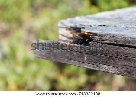 Wood #718382188