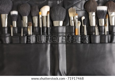 Collection of professional makeup brushes #71917468