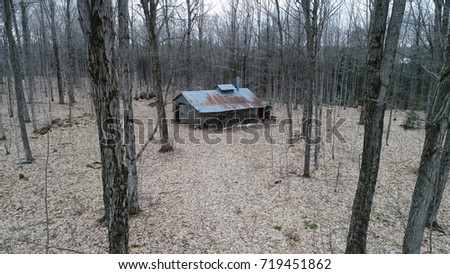 Rustic Old Maple Syrup Shack In The Woods In Early Spring #719451862