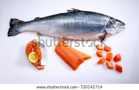 Fresh salmon fish uncooked isolated on white background. Sliced and filleted pieces next to it #720142714