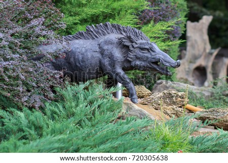 Wild boar walking through dead grass and pine trees #720305638