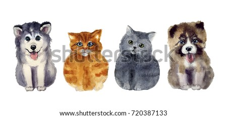 watercolor cute cats and dogs on the white background #720387133