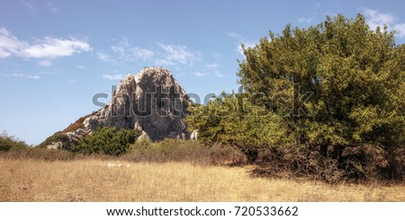 Hiking in the Hills of Ficuzza, Sicily in Italy, Europe. Warm summer like September Afternoon #720533662