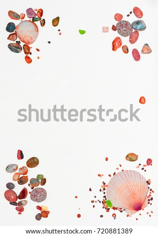 Sea shells #720881389