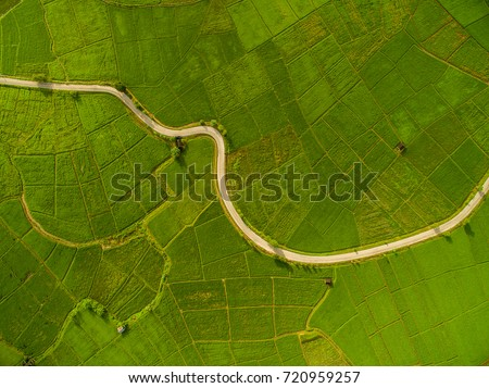 Rice Terrace Aerial Shot. Image of beautiful terrace rice field in Chiang Mai Thailand