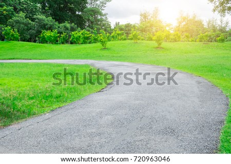 Road path pass through the tree park garden with many tree around area and landscape with beautiful warm light from the sun feeling motivation and refresh  #720963046