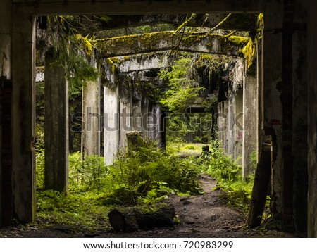 Old dirty broken ruined abandoned building among Bog, Facade ruins of industrial factory. Alley way with moss illuminated by sunlight. Royalty-Free Stock Photo #720983299