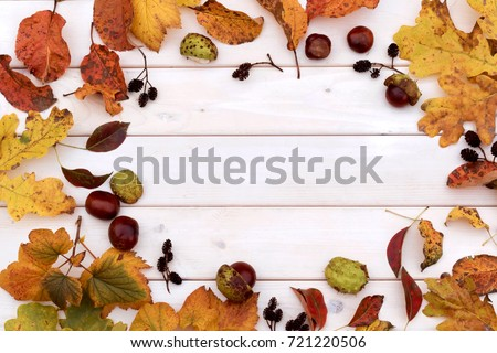 Autumn background of yellow leaves and cones. Top view.  #721220506