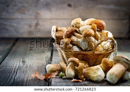Mushroom Boletus over Wooden Background. Autumn Cep Mushrooms. Ceps Boletus edulis over Wooden Dark Background, close up on wood rustic table. Cooking delicious organic mushroom. Gourmet food Royalty-Free Stock Photo #721266823