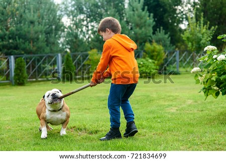 Caucasian boy playing with a bulldog. #721834699