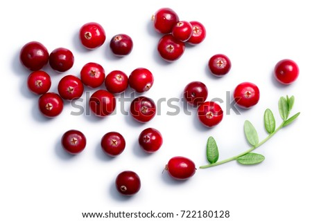 Cranberries (fruits of Vaccinium oxycoccus) with leaves, top view. Clipping paths, shadow separated. Layers: goo.gl/xvn1is #722180128