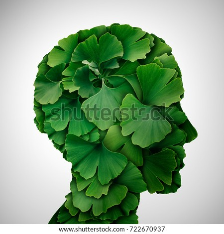 Ginkgo Biloba leaf head as a herbal medicine concept and natural phytotherapy medication symbol for healing as leaves shaped as a human. #722670937