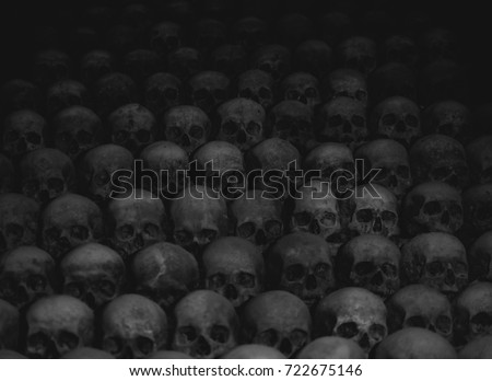 Collection of skulls covered with spider web and dust in the catacombs. Numerous creepy skulls in the dark.