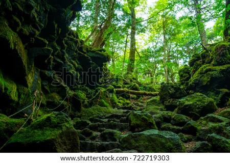 Saiko Ryugu Cave #722719303