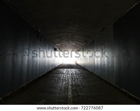 Light at the End of a Arch Style Tunnel Near a Park in Ottawa, Canada #722776087